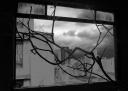janela-dist